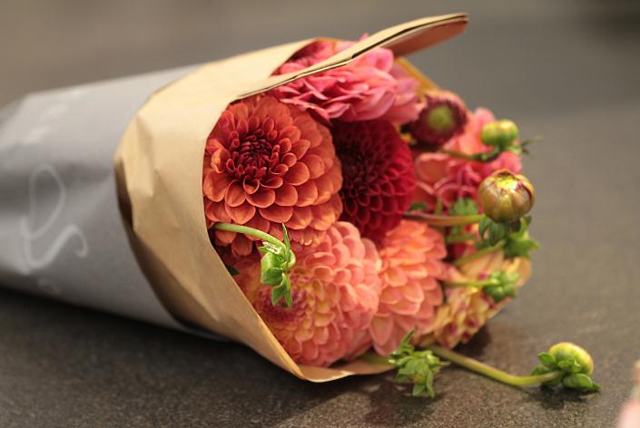 Blumen Sonn Nellingen