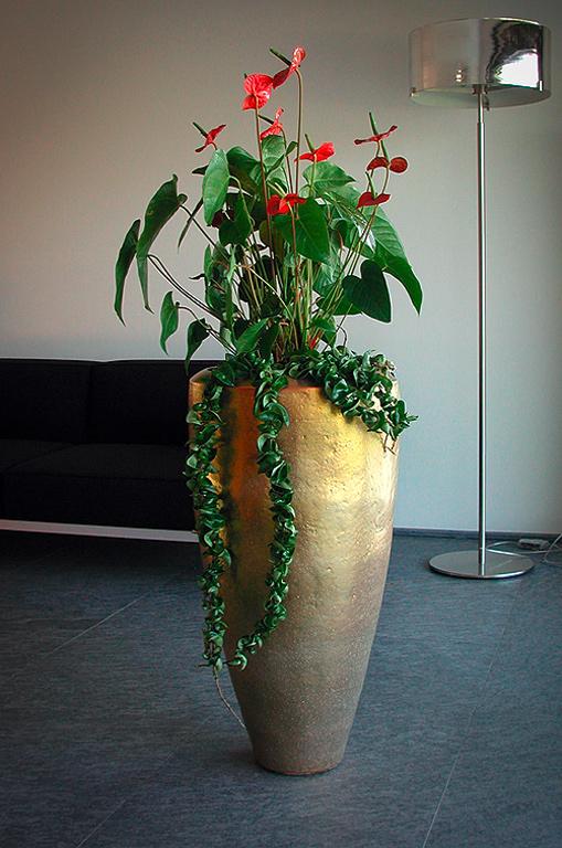 Raumbegrünung Blumen Sonn Ostfildern/Nellingen
